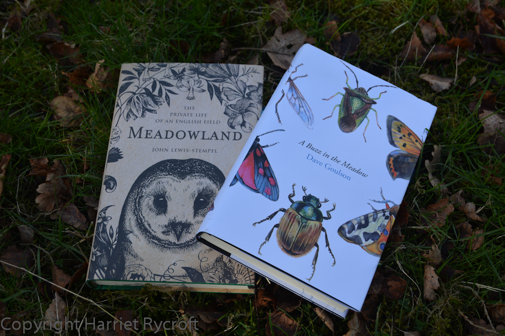 Meadowlands by John Lewis-Stempel and A Buzz in the Meadow by Dave Goulson