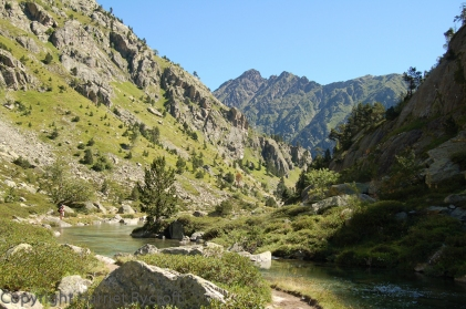 In the Pyrenees - no serious botanising for me, unfortunately