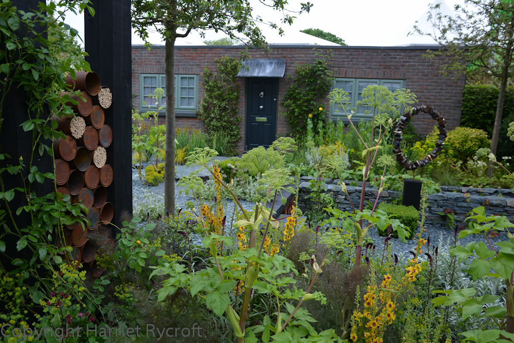 More rustiness on The Great Chelsea Garden Challenge garden by Sean Murray