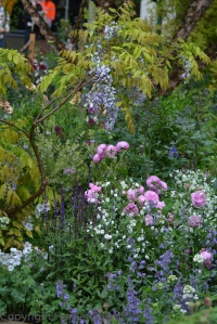Call me old-fashioned, but I like roses, wisteria etc...  Some of Jo Thompson's planting on the M&G garden