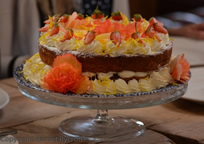 Cakey cakey! The Begonia 'Apricot Shades' petals are tasty too.