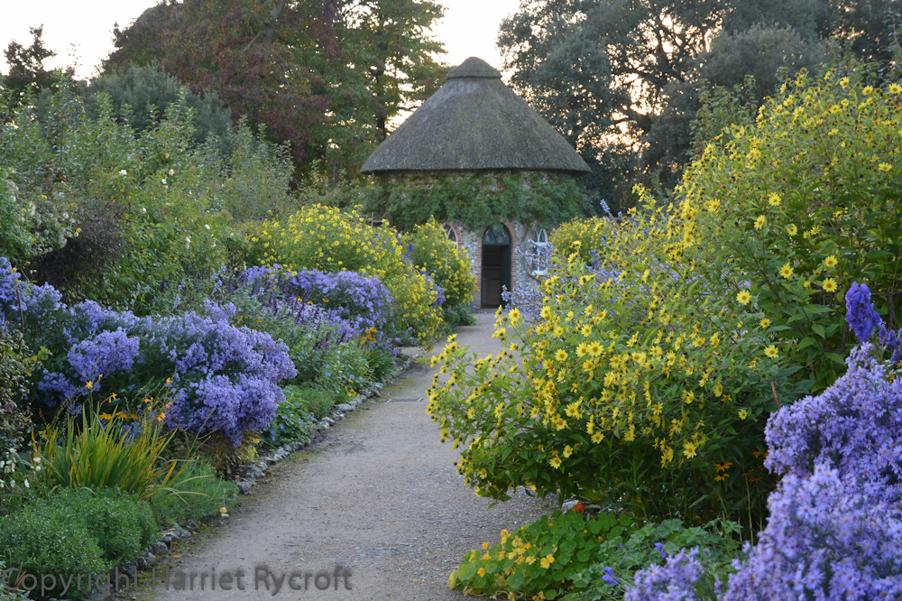 In October Chris and I visited West Dean Gardens, we stayed quite late and as the dusk deepened we walked between these fabulous borders in the walled garden. To me the colours sing all the more when the sun has almost gone.