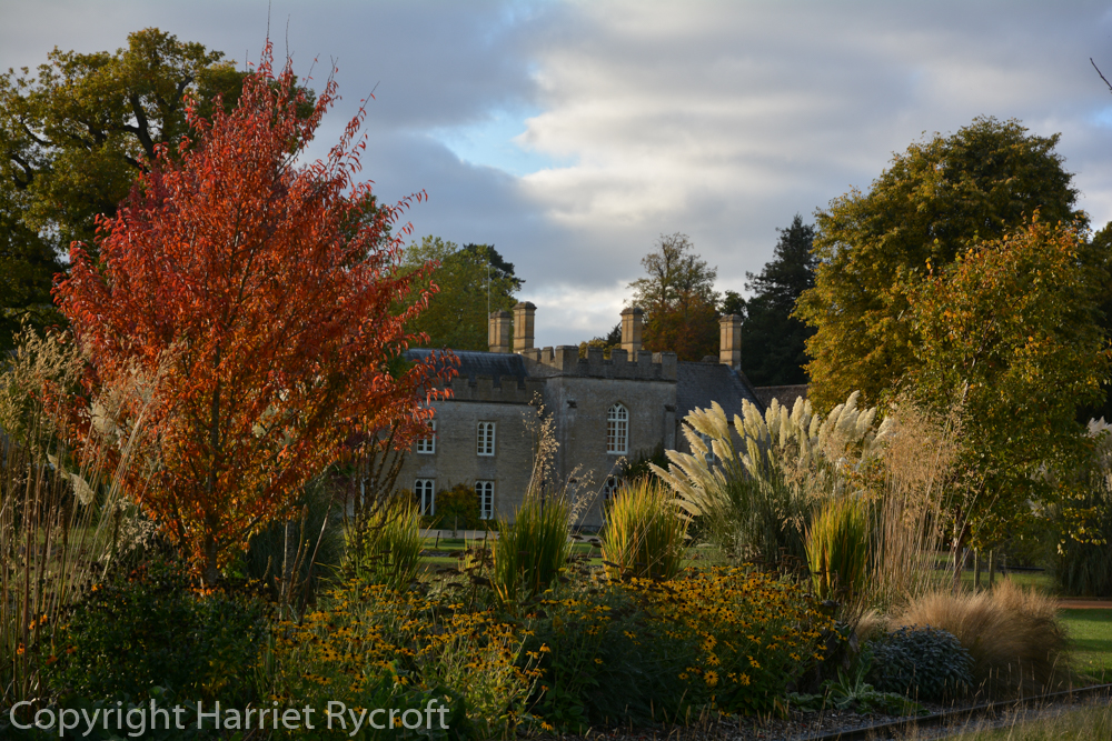 Autumn - there's a large and still-expanding collection of trees