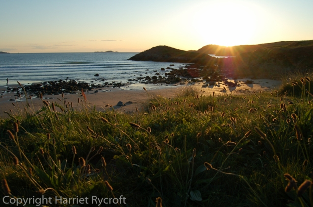 20070528-wales,tilly 096-2