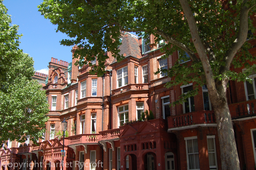 Mansions and plane trees on the route to Chelsea Flower Show