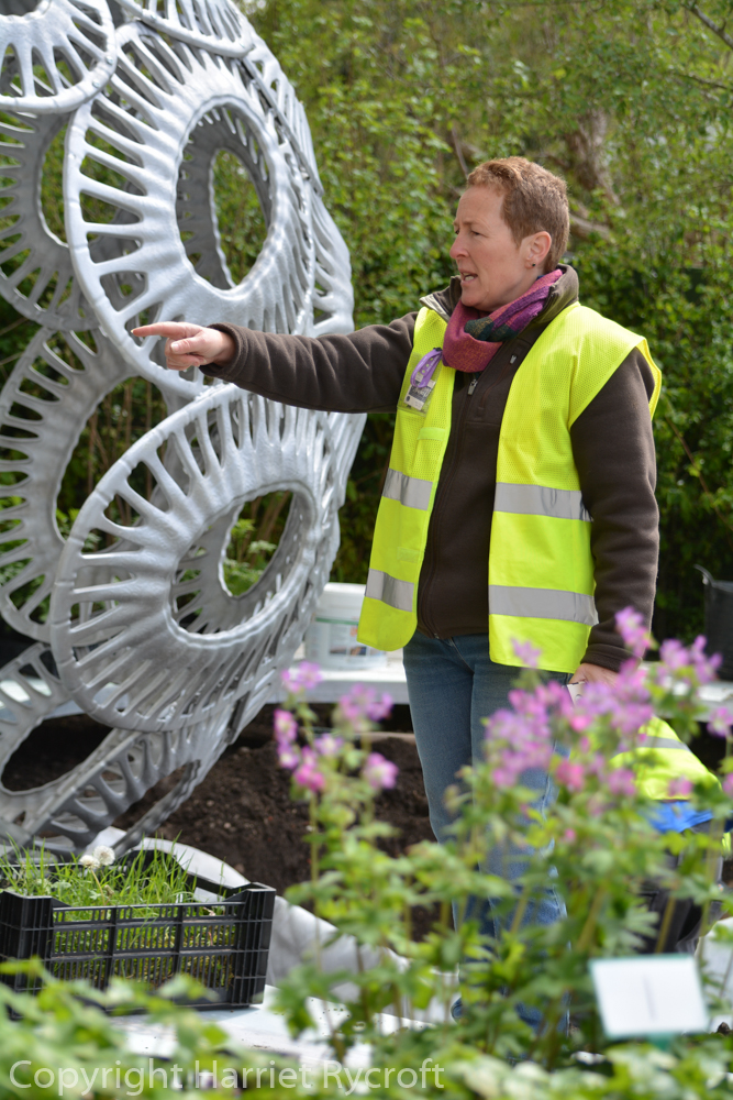 Forever Freefolk – joining a planting team at RHS Chelsea FlowerShow