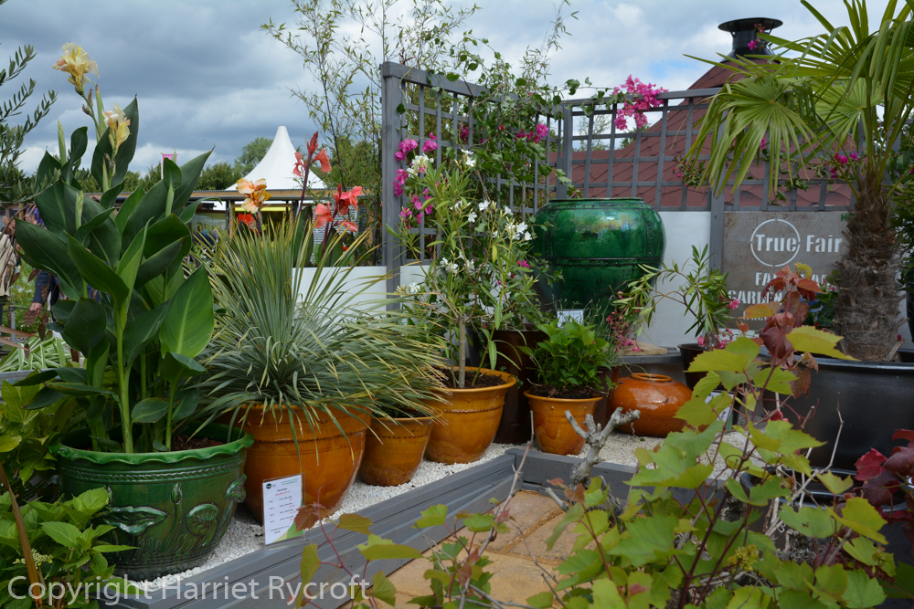 Plenty of pots