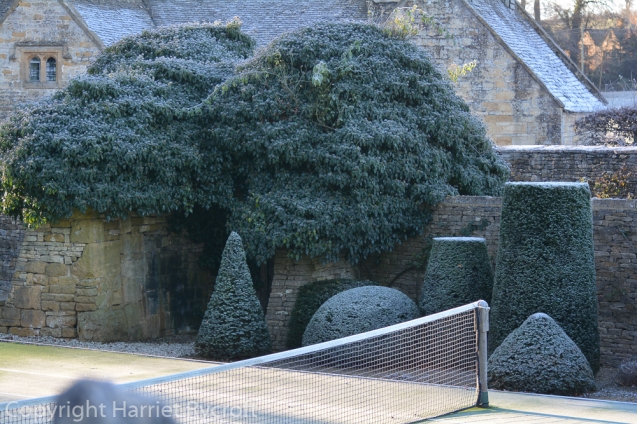 Anyone for topiary?
