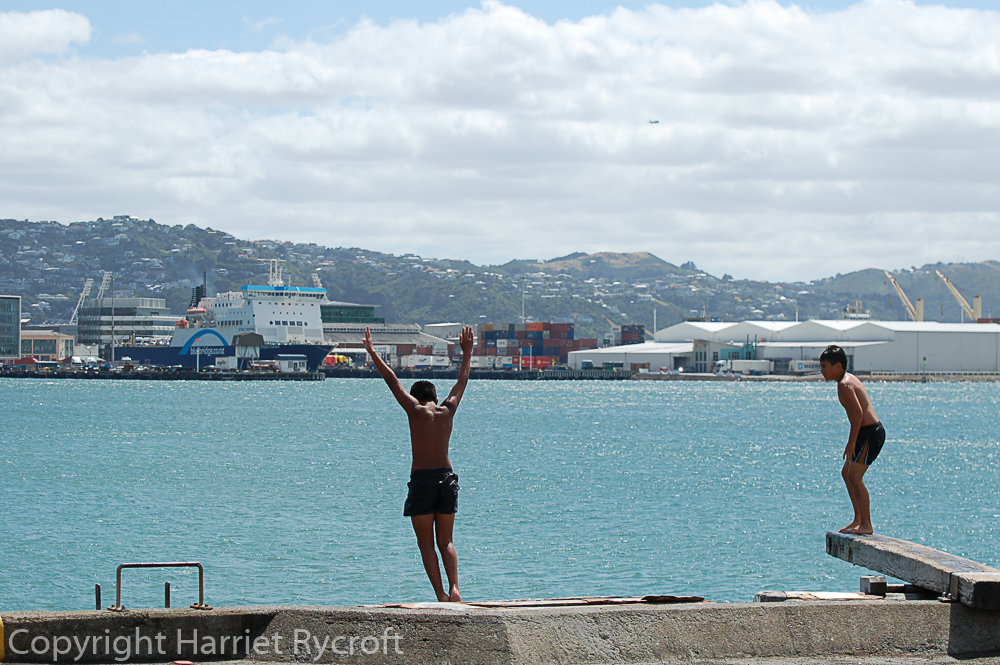 Boys diving from Wellington waterfront. There can't be many capital cities where you can do this.