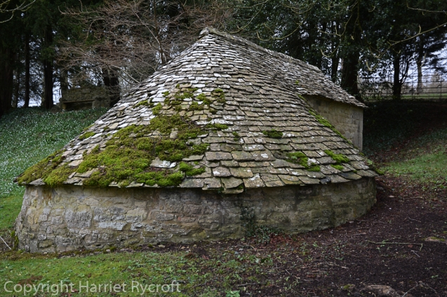 OF COURSE there should be an ice house among a collection of snowdrops. You can see G. plicatus subsp. byzantinus by this lovely 18th century building.